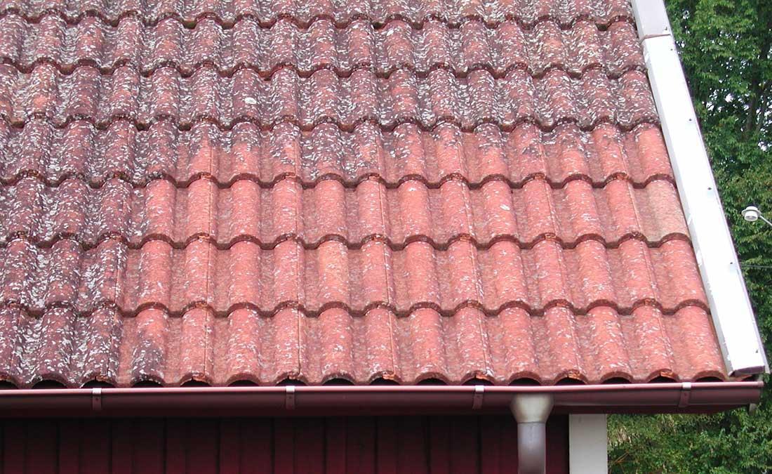 Rent tak - Vi är proffs på papptak och plåtslageriarbeten, sedumak, papptak tätskikt takläggare takpapp pvc-duk
